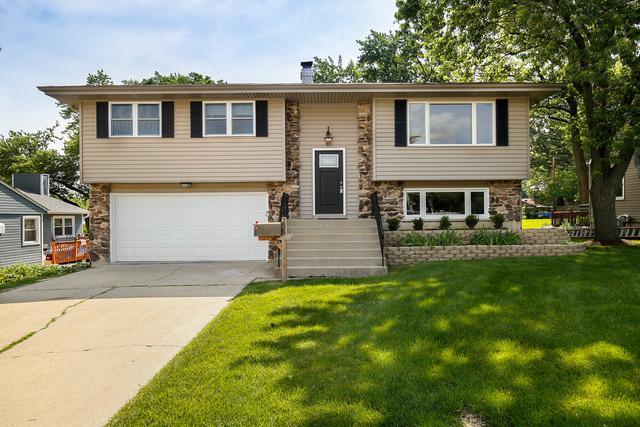 235 N Oak Avenue, Bartlett, IL 60103 (MLS #09988542) :: The Dena Furlow Team - Keller Williams Realty