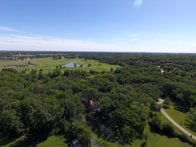 830 E Francis Road, New Lenox, IL 60451 (MLS #09988872) :: Ani Real Estate