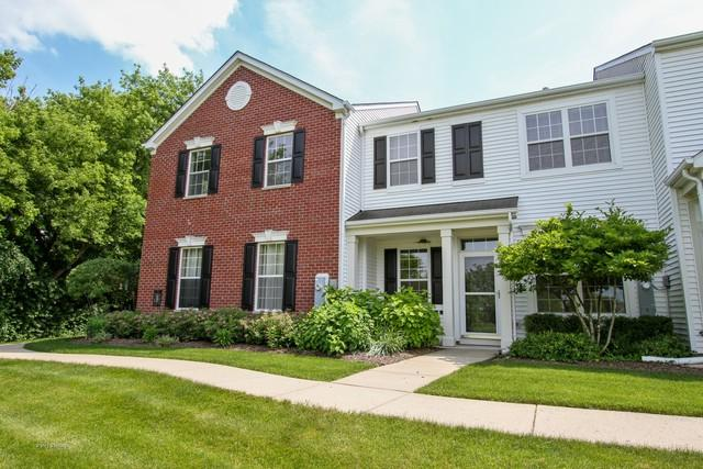 509 S Lakeside Court, Round Lake, IL 60073 (MLS #09989035) :: Property Consultants Realty