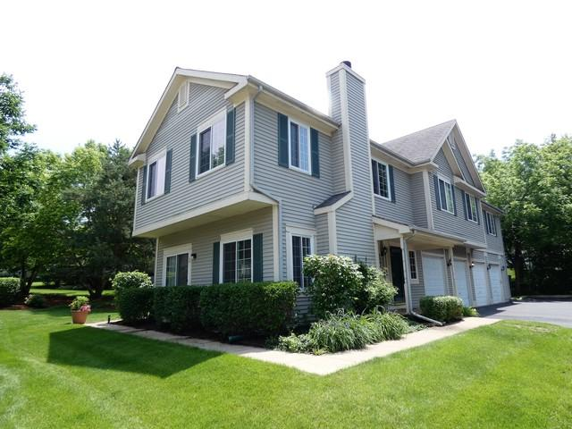 258 Windsor Court A, South Elgin, IL 60177 (MLS #09989038) :: Property Consultants Realty