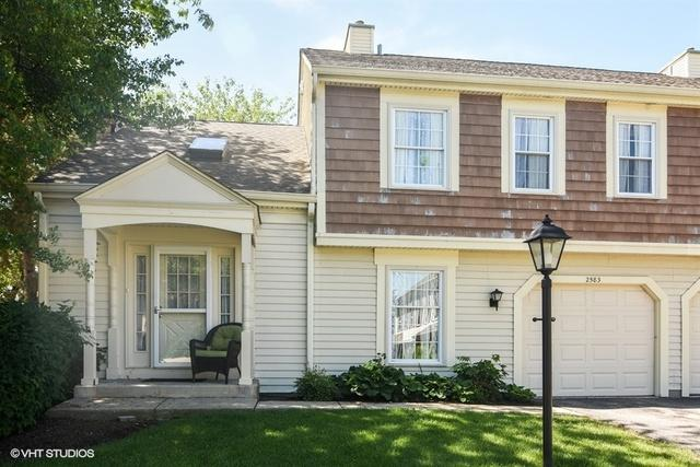 2583 College Hill Circle, Schaumburg, IL 60173 (MLS #09989043) :: Property Consultants Realty