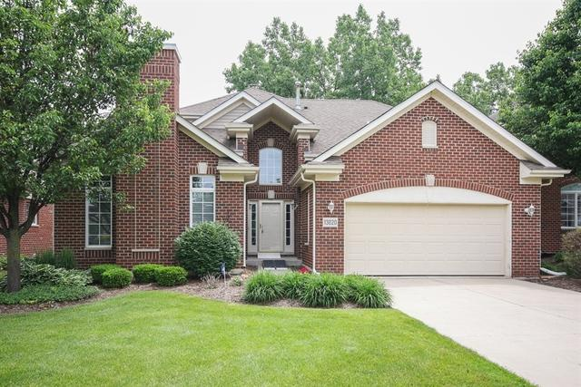 13020 Timber Court, Palos Heights, IL 60463 (MLS #09989084) :: The Dena Furlow Team - Keller Williams Realty