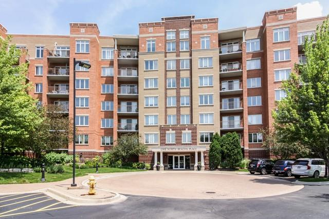 1 N Beacon Place #412, La Grange, IL 60525 (MLS #09989444) :: The Wexler Group at Keller Williams Preferred Realty