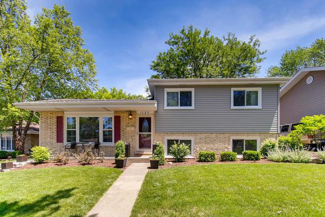 1029 Crestview Drive, Lemont, IL 60439 (MLS #09989821) :: Ani Real Estate
