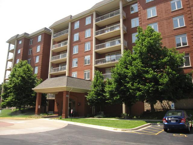 8400 Callie Avenue #602, Morton Grove, IL 60053 (MLS #09990061) :: Domain Realty