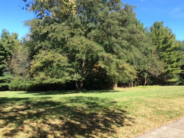 406 E Sherwin Drive, Urbana, IL 61802 (MLS #09990152) :: Ryan Dallas Real Estate
