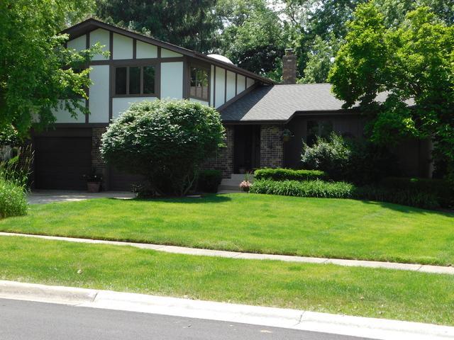 220 Little John Court, Bartlett, IL 60103 (MLS #09990179) :: The Dena Furlow Team - Keller Williams Realty