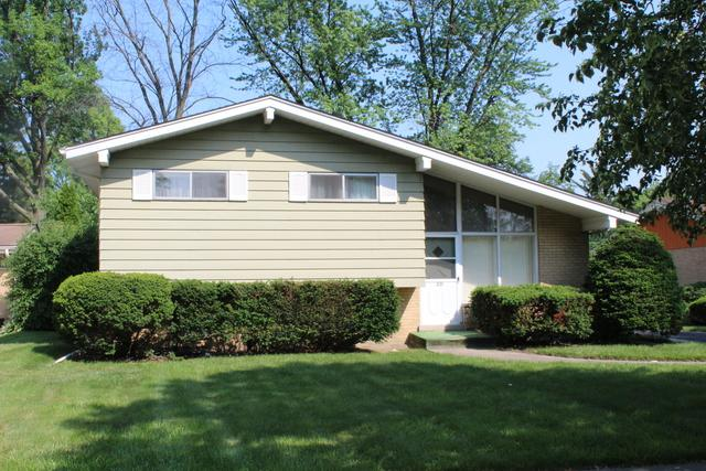 221 Terry Lane, Villa Park, IL 60181 (MLS #09990319) :: Ani Real Estate