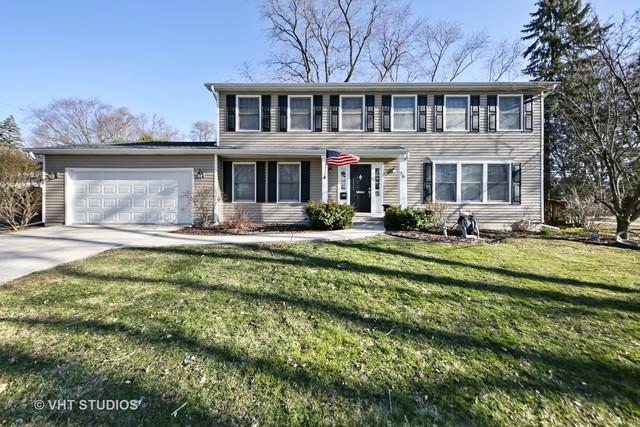36 S Grant Street, Westmont, IL 60559 (MLS #09990462) :: Ani Real Estate