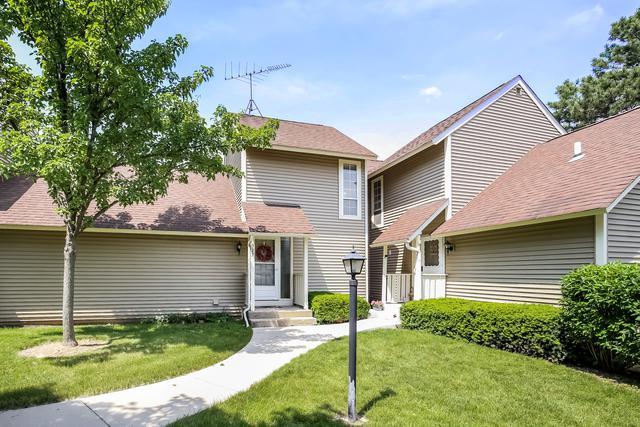 927 Clark Drive #0, Gurnee, IL 60031 (MLS #09990486) :: Ani Real Estate