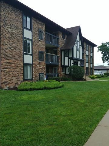 13651 Lamon Avenue B06, Crestwood, IL 60418 (MLS #09990618) :: Ani Real Estate