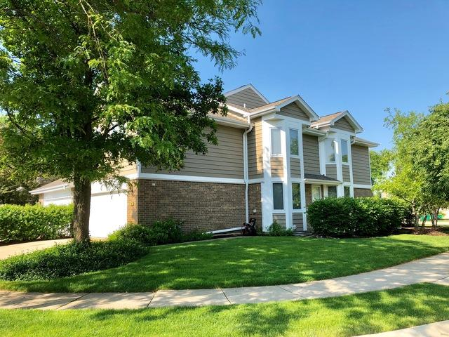 290 Brunswick Drive #1, Buffalo Grove, IL 60089 (MLS #09990802) :: Ani Real Estate