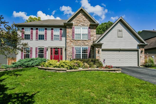 1330 Walnut Ridge Drive, Montgomery, IL 60538 (MLS #09991140) :: Ani Real Estate
