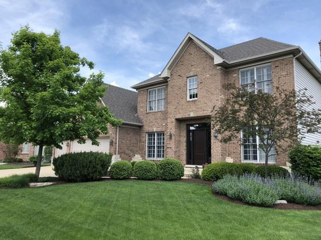 3512 Tall Grass Drive, Naperville, IL 60564 (MLS #09991195) :: The Dena Furlow Team - Keller Williams Realty