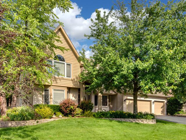 4035 Broadmoor Circle, Naperville, IL 60564 (MLS #09991250) :: The Dena Furlow Team - Keller Williams Realty