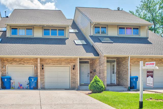 11059 Catherine Drive, Palos Hills, IL 60465 (MLS #09991317) :: Ani Real Estate