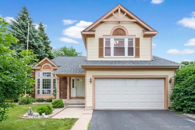 4690 Green Bridge Lane, Hanover Park, IL 60133 (MLS #09991564) :: Ani Real Estate