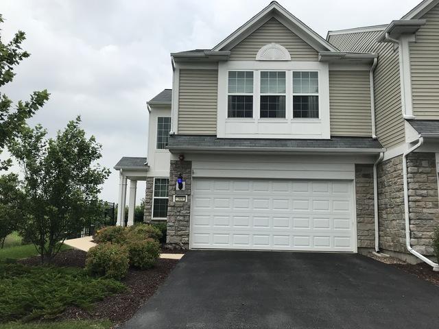 369 Devoe Drive, Oswego, IL 60543 (MLS #09991572) :: The Dena Furlow Team - Keller Williams Realty