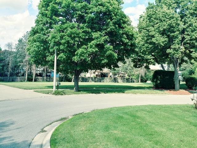 Lot 8 Grays Court, Oswego, IL 60543 (MLS #09991932) :: The Dena Furlow Team - Keller Williams Realty