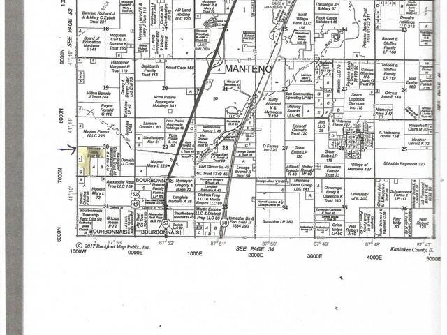 1000 W 7050 N Road, Manteno, IL 60950 (MLS #09992390) :: The Dena Furlow Team - Keller Williams Realty