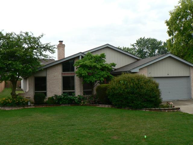 704 Central Road, New Lenox, IL 60451 (MLS #09992391) :: Ani Real Estate