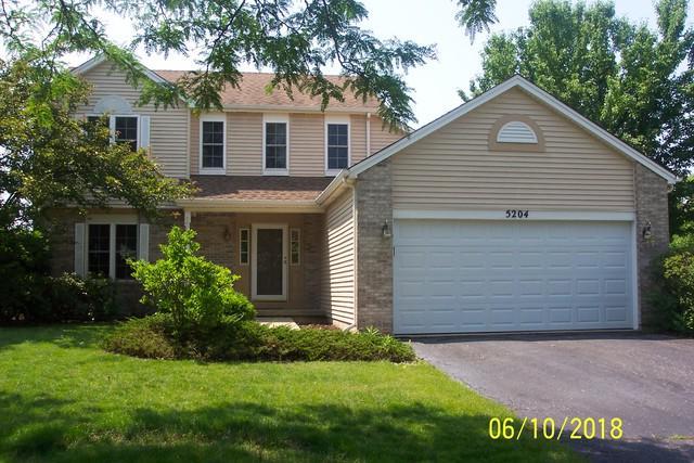 5204 Burgess Drive, Plainfield, IL 60586 (MLS #09992463) :: The Dena Furlow Team - Keller Williams Realty