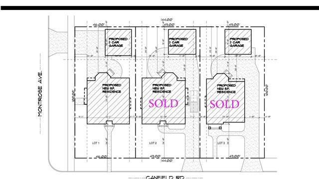 4404 N Canfield Avenue, Norridge, IL 60706 (MLS #09992493) :: Ani Real Estate