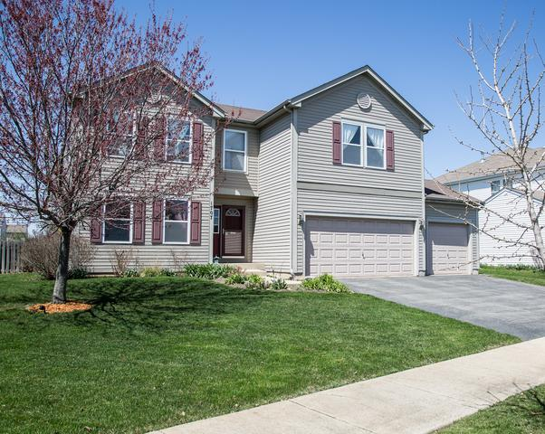 1707 Sandstone Parkway, Montgomery, IL 60538 (MLS #09992584) :: Ani Real Estate