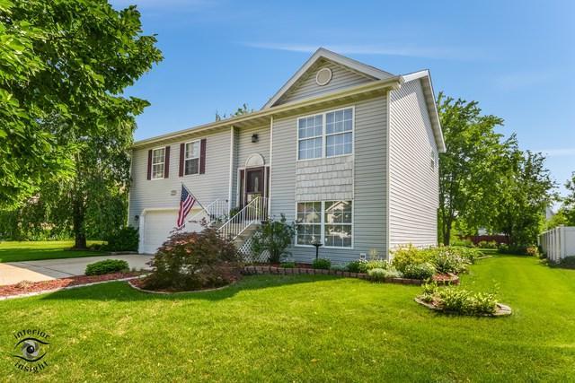 814 Ann Street, Joliet, IL 60435 (MLS #09992613) :: The Wexler Group at Keller Williams Preferred Realty