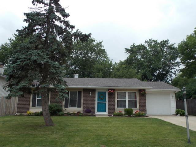 145 Springhill Drive, Bolingbrook, IL 60440 (MLS #09992710) :: The Wexler Group at Keller Williams Preferred Realty