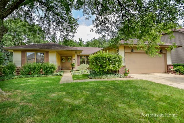645 Chippewa Drive, Naperville, IL 60563 (MLS #09992743) :: The Wexler Group at Keller Williams Preferred Realty