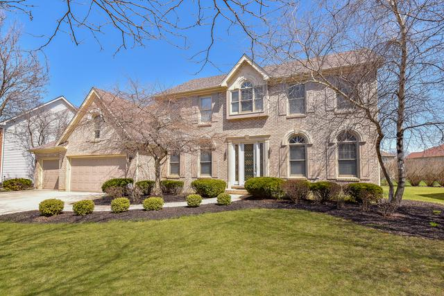 1420 Monarch Circle, Naperville, IL 60564 (MLS #09992810) :: The Wexler Group at Keller Williams Preferred Realty