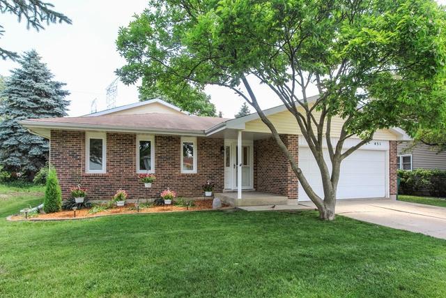 451 Carman Avenue, Buffalo Grove, IL 60089 (MLS #09992963) :: Ani Real Estate