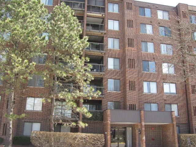 400 Park Avenue #116, Calumet City, IL 60409 (MLS #09992967) :: Ani Real Estate