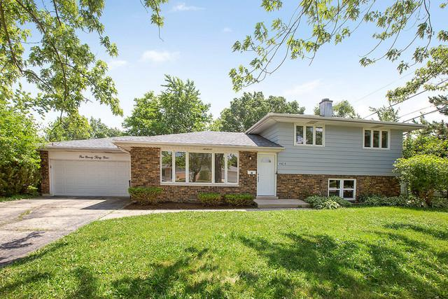 19039 Bernadine Street, Lansing, IL 60438 (MLS #09993102) :: The Dena Furlow Team - Keller Williams Realty