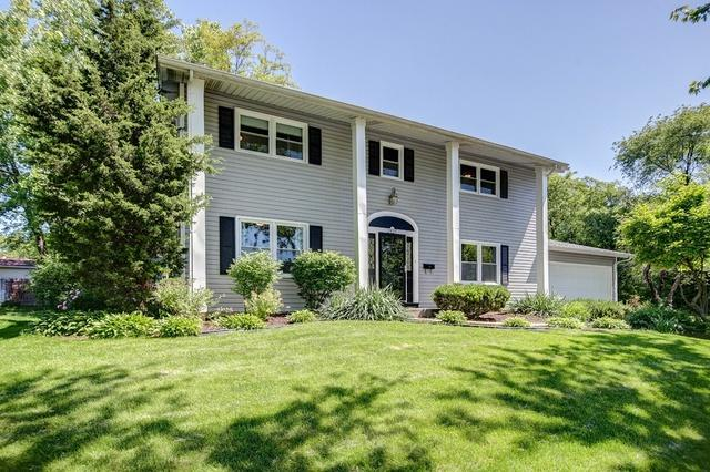 2820 Jackson Drive, Woodridge, IL 60517 (MLS #09993251) :: Ani Real Estate
