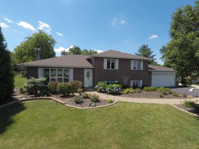 1804 Illini Drive, New Lenox, IL 60451 (MLS #09993396) :: Ani Real Estate