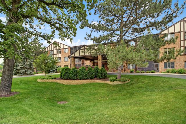7800 W Foresthill Lane #302, Palos Heights, IL 60463 (MLS #09993430) :: Ani Real Estate