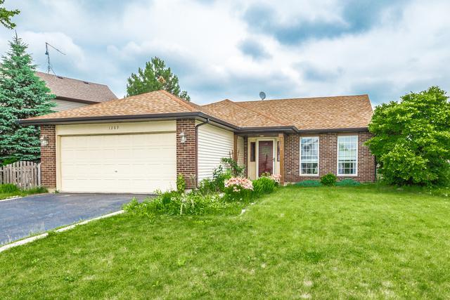 1289 Longford Circle, Elgin, IL 60120 (MLS #09993676) :: Ani Real Estate