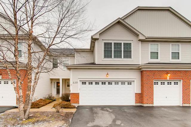 239 Dorset Avenue, Oswego, IL 60543 (MLS #09993974) :: The Dena Furlow Team - Keller Williams Realty