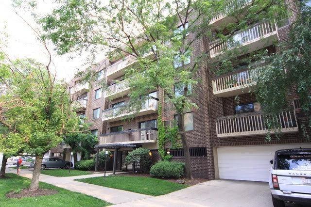 6102 N Sheridan Road #205, Chicago, IL 60660 (MLS #09994154) :: The Dena Furlow Team - Keller Williams Realty