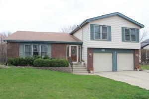 248 Whitewater Drive, Bolingbrook, IL 60440 (MLS #09994183) :: Ani Real Estate