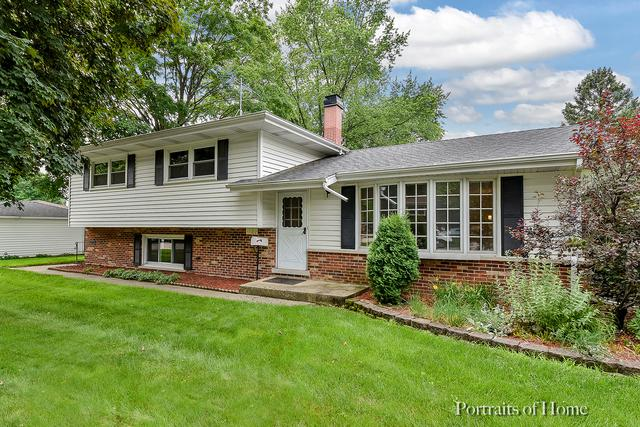 1122 Coolidge Avenue, Wheaton, IL 60189 (MLS #09994225) :: Ani Real Estate