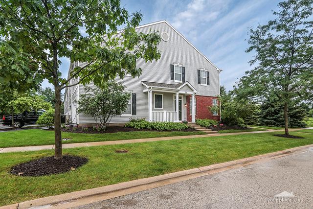 201 Springbrook Trail S, Oswego, IL 60543 (MLS #09994247) :: Ani Real Estate