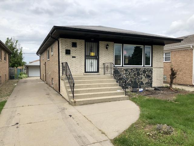 330 Manistee Avenue, Calumet City, IL 60409 (MLS #09994411) :: Ani Real Estate