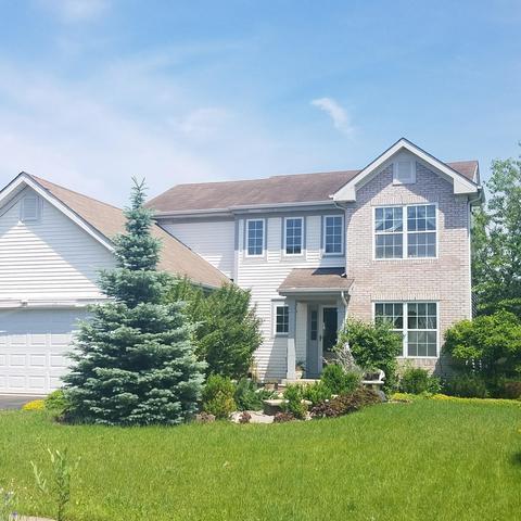 451 Lake Plumleigh Way, Algonquin, IL 60102 (MLS #09994508) :: Ani Real Estate