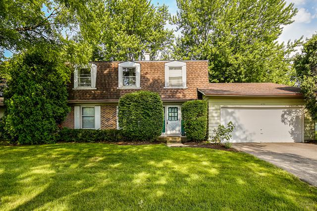 692 Michigan Lane, Elk Grove Village, IL 60007 (MLS #09994650) :: The Dena Furlow Team - Keller Williams Realty
