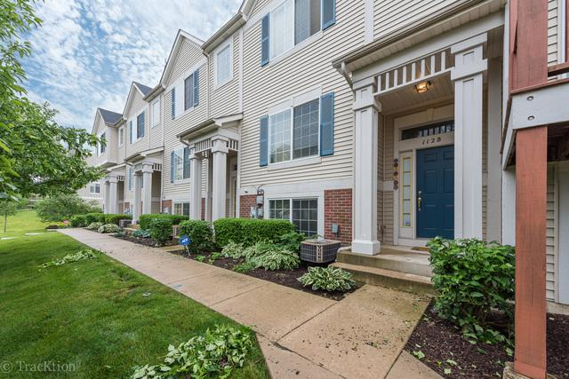 112 Enclave Circle B, Bolingbrook, IL 60440 (MLS #09994812) :: Ani Real Estate
