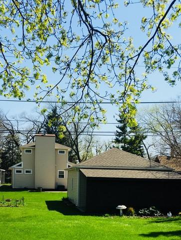 1670 Greenleaf Avenue, Des Plaines, IL 60018 (MLS #09994866) :: Ani Real Estate