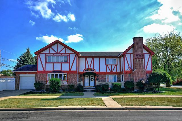 1947 N 76TH Avenue, Elmwood Park, IL 60707 (MLS #09994919) :: Ani Real Estate